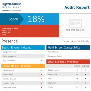 Online presence report
