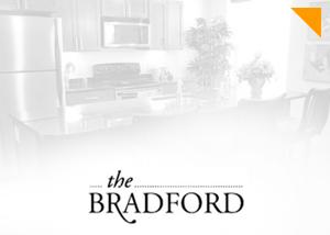 The Bradford